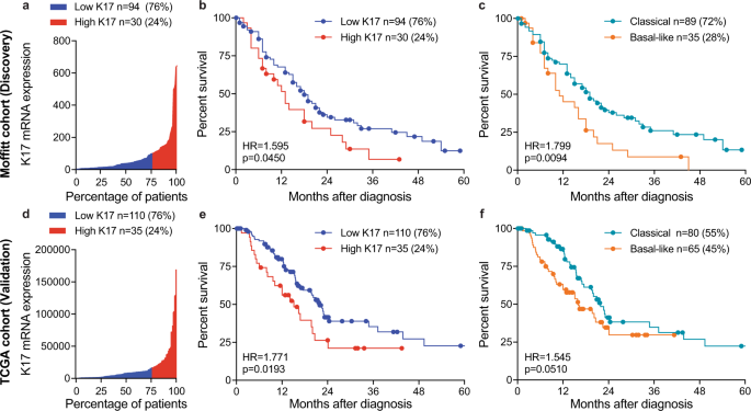 Keratin 17 identifies the most lethal molecular subtype of