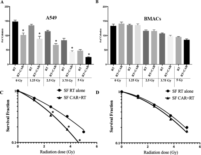 Radio-selective effects of a natural occurring muscle-derived