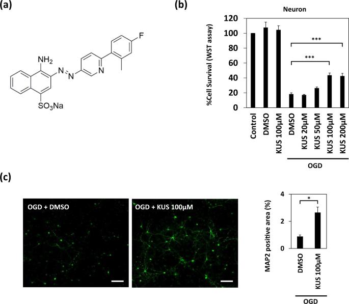 KUS121, a valosin-containing protein modulator, attenuates