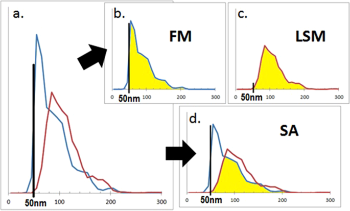 Improved methods for fluorescent labeling and detection of