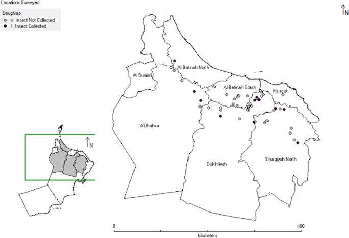 Susceptibility survey of Ommatissus lybicus (de Bergevin