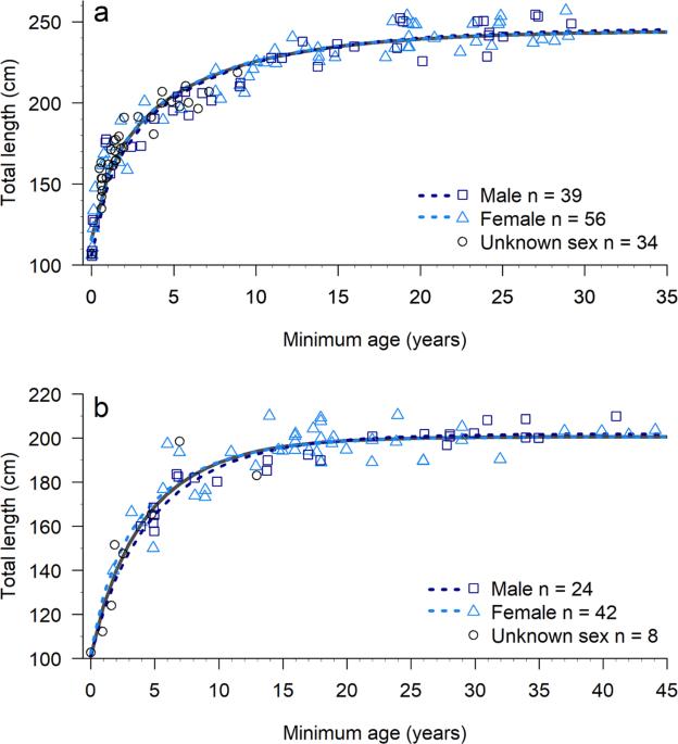 Morphological differences between coastal bottlenose dolphin