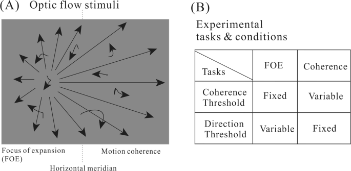 Distinct forms of motion sensitivity impairments in
