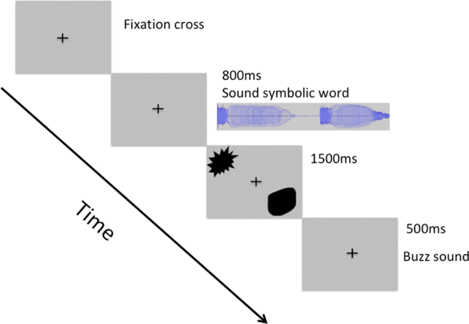 Sound symbolic congruency detection in humans but not in