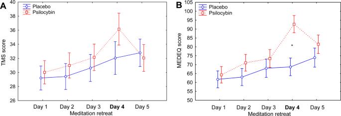 A Study of Meditation Under the Influence of Psilocybin
