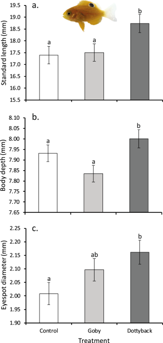 Habitat Degradation And Predators Have Independent Trait Mediated Effects On Prey Scientific Reports
