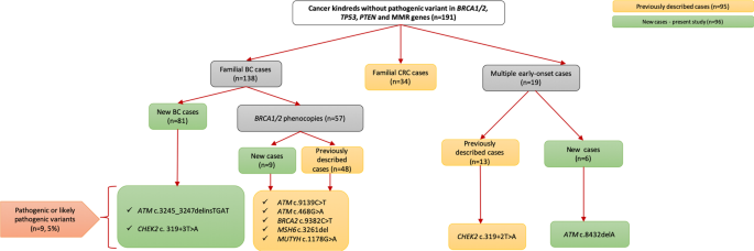 Results Of Multigene Panel Testing In Familial Cancer Cases Without Genetic Cause Demonstrated By Single Gene Testing Scientific Reports