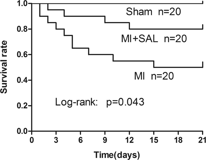 Protective effects of Salidroside on cardiac function in mice with myocardial infarction