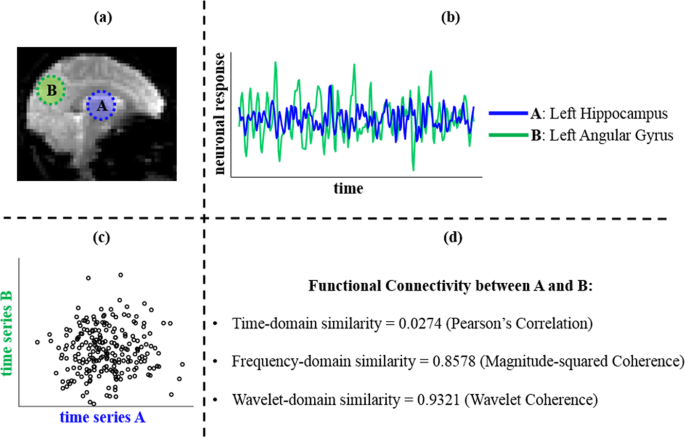 Rethinking Measures Of Functional Connectivity Via Feature Extraction Scientific Reports
