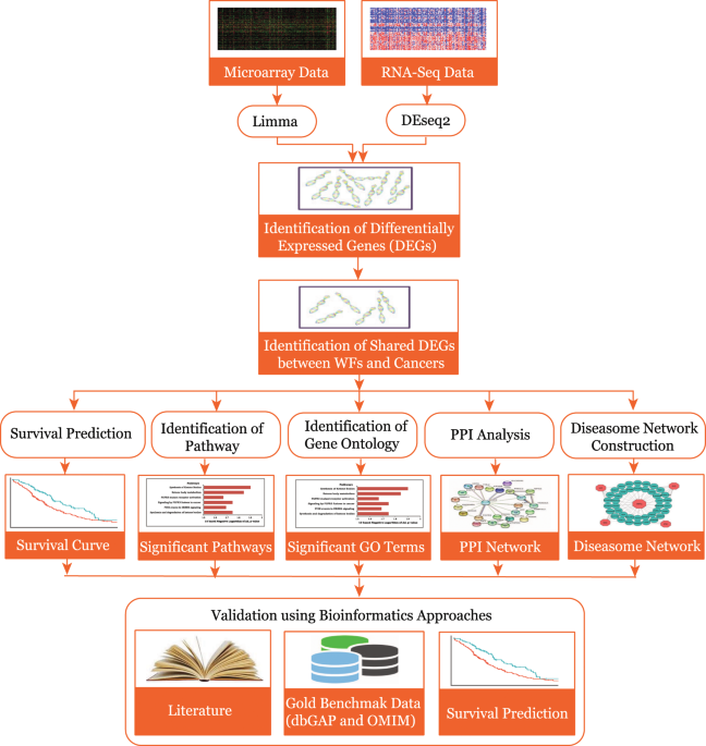 Machine Learning and Bioinformatics Models to Identify Pathways that Mediate Influences of Welding Fumes on Cancer Progression