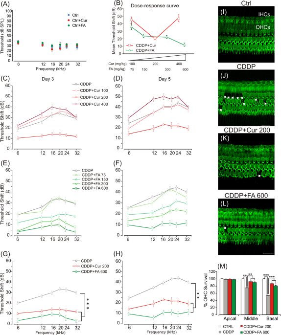 The Dual Role Of Curcumin And Ferulic Acid In Counteracting Chemoresistance And Cisplatin Induced Ototoxicity Scientific Reports