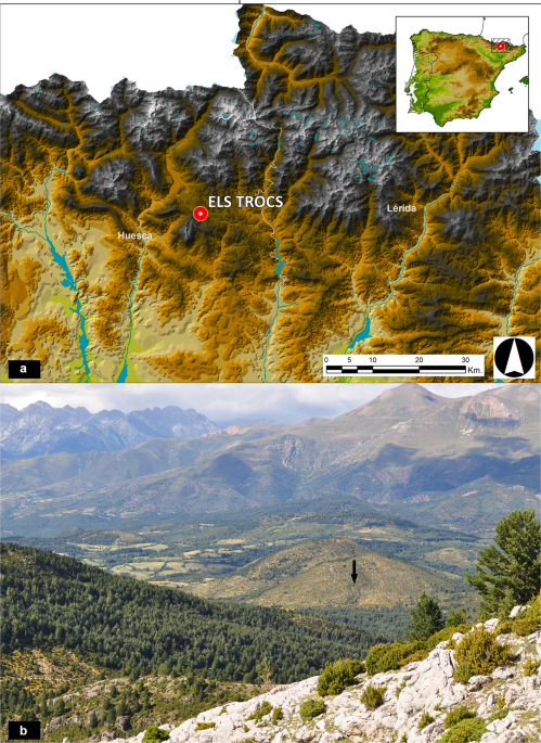 A massacre of early Neolithic farmers in the high Pyrenees at Els Trocs, Spain