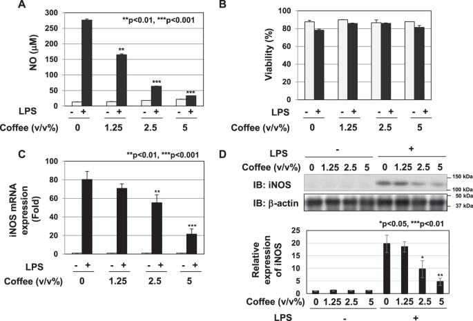 Pyrocatechol A Component Of Coffee Suppresses Lps Induced