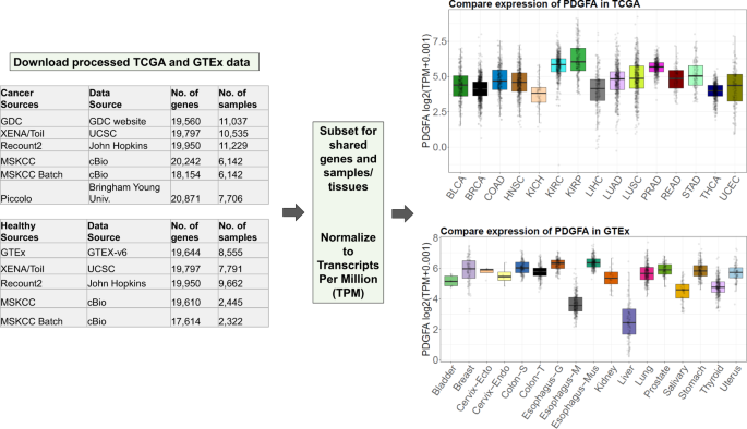 Variability in estimated gene expression among commonly used RNA-seq pipelines