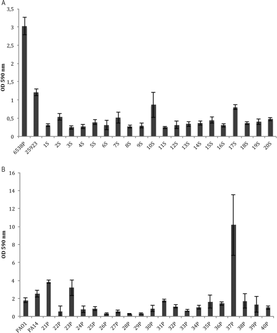 Essential oils against bacterial isolates from cystic fibrosis patients by means of antimicrobial and unsupervised machine learning approaches