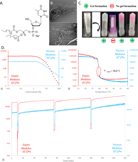 Nucleotide lipid-based hydrogel as a new biomaterial ink for biofabrication