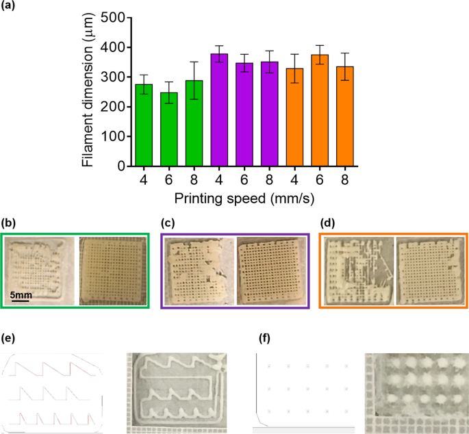 In-vivo vascular application via ultra-fast bioprinting for future 5D personalised nanomedicine