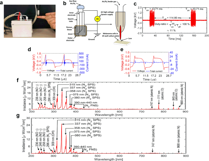 Cold atmospheric plasma generated reactive species aided inhibitory effects on human melanoma cells: an in vitro and in silico study