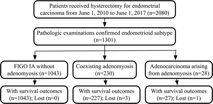 endometrial cancer or adenomyosis am scăpat de verucile genitale