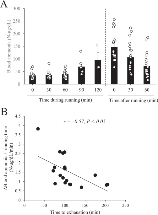 6. which diet produced the maximum endurance?