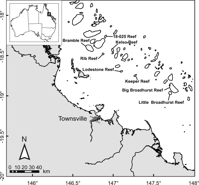 DNA-based identification of predators of the corallivorous Crown-of-Thorns Starfish (Acanthaster cf. solaris) from fish faeces and gut contents