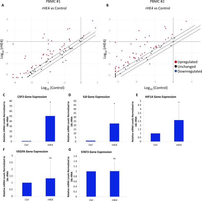 The biomarker HE4 (WFDC2) promotes a pro-angiogenic and immunosuppressive tumor microenvironment ...