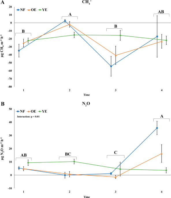 Structural And Functional Shifts Of Soil Prokaryotic Community Due To Eucalyptus Plantation And Rotation Phase Scientific Reports