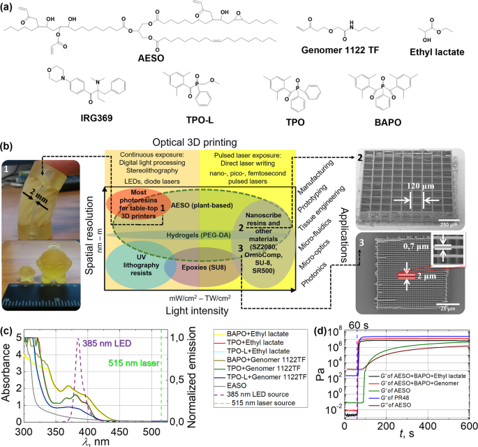 A Bio-Based Resin for a Multi-Scale Optical 3D Printing