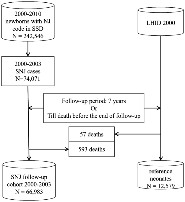 Long-term neurodevelopmental outcomes of significant neonatal ...
