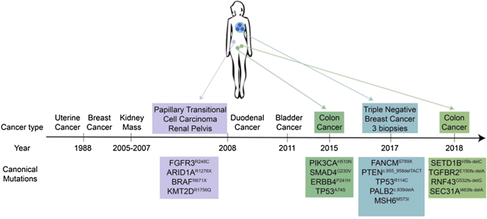 Unique Genomic And Neoepitope Landscapes Across Tumors A Study Across Time Tissues And Space Within A Single Lynch Syndrome Patient Scientific Reports