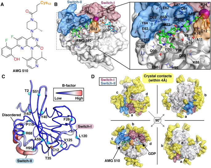 KRAS(G12C)-AMG 510 interaction dynamics revealed by all-atom molecular dynamics simulations