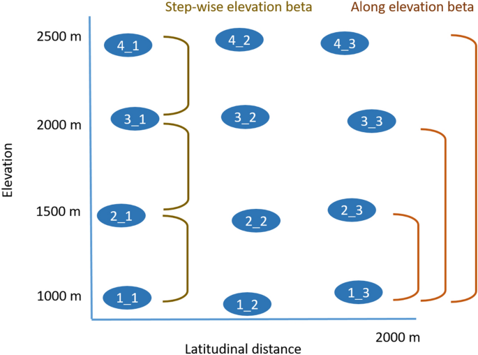 Species Richness And Beta Diversity Patterns Of Multiple Taxa Along An Elevational Gradient In Pastured Grasslands In The European Alps Scientific Reports