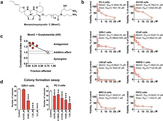 Marine alkaloid monanchoxymycalin C: a new specific activator of JNK1/2 kinase with anticancer properties
