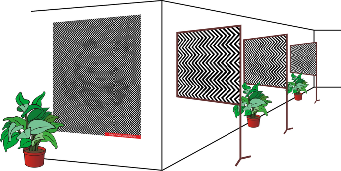 The perception threshold of the panda illusion, a particular form of 2D pulse-width-modulated halftone, correlates with visual acuity