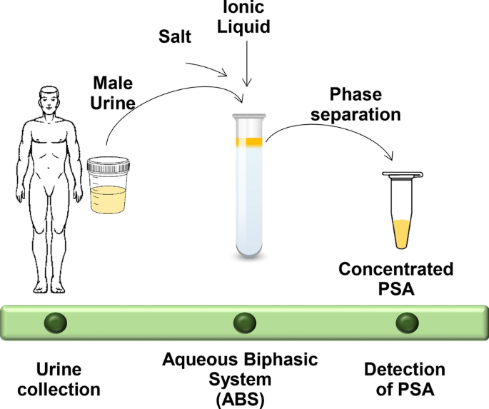 salt prostate)