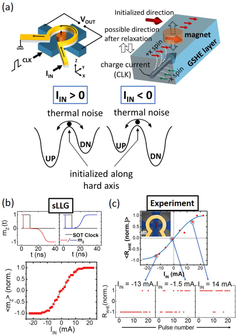 Hardware implementation of Bayesian network building blocks with stochastic spintronic devices