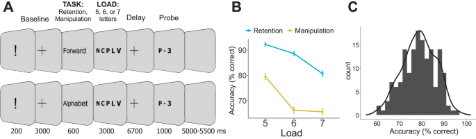 The electrophysiological underpinnings of variation in verbal working memory capacity