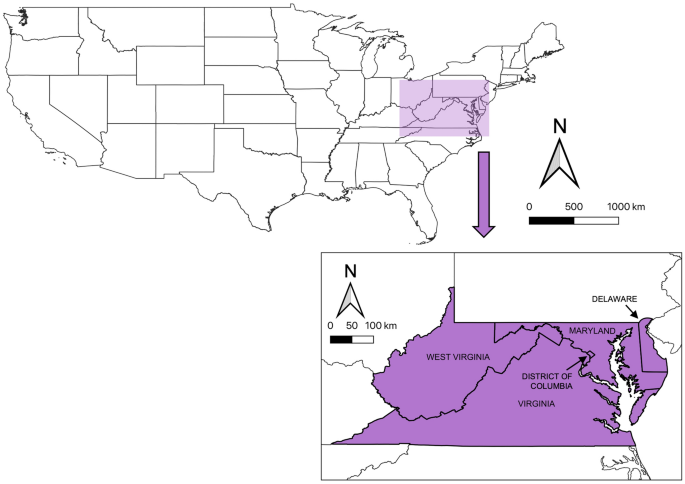 Decline of six native mason bee species following the arrival of an exotic congener