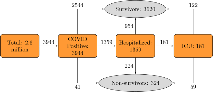 Developing and validating COVID-19 adverse outcome risk prediction models from a bi-national European cohort of 5594 patients