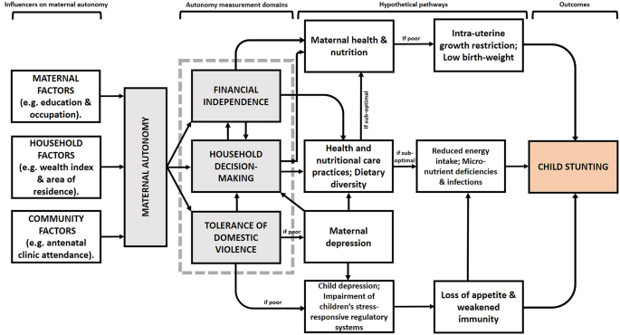 Higher maternal autonomy is associated with reduced child stunting ...