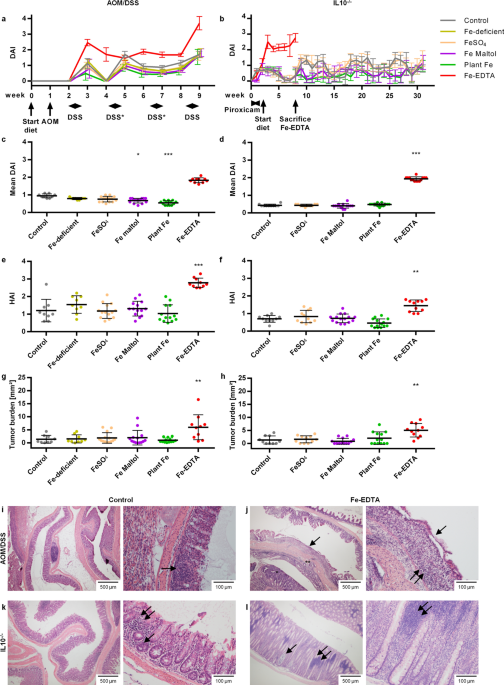 The food additive EDTA aggravates colitis and colon carcinogenesis in mouse models