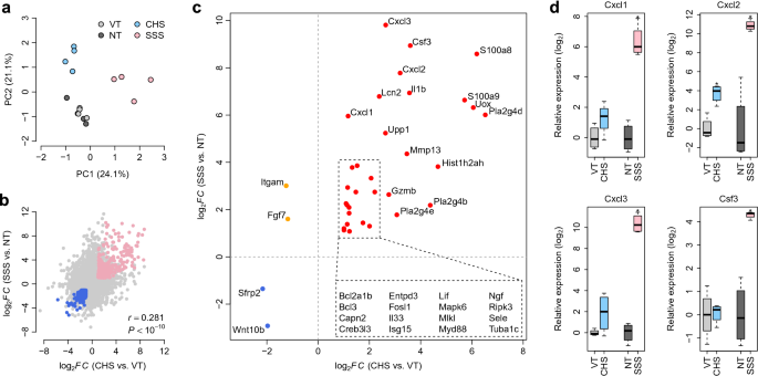 Transcriptomic insight into the translational value of two murine models in human atopic dermatitis