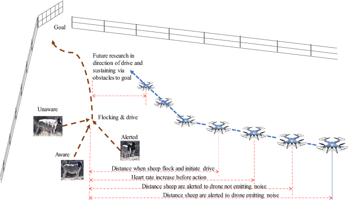 Drone approach parameters leading to lower stress sheep flocking and movement: sky shepherding