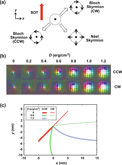 Discrimination of skyrmion chirality via spin–orbit and –transfer torques for logic operation