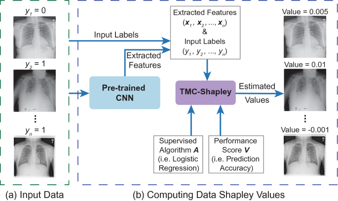 Data valuation for medical imaging using Shapley value and application to a large-scale chest X-ray dataset