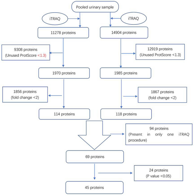 A panel of urine-derived biomarkers to identify sepsis and distinguish it from systemic inflammatory response syndrome - Scientific Reports
