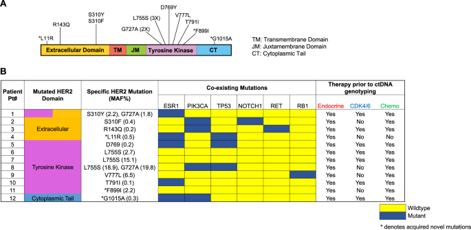Blood-based monitoring identifies acquired and targetable driver