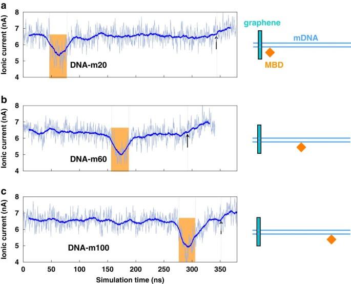 Nanoporen Sequenzierung