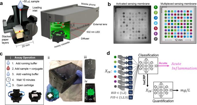 Deep learning-enabled point-of-care sensing using multiplexed paper-based sensors