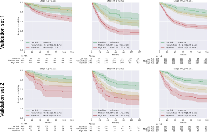 Interpretable survival prediction for colorectal cancer using deep learning